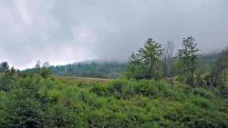 Mgła się podnosi